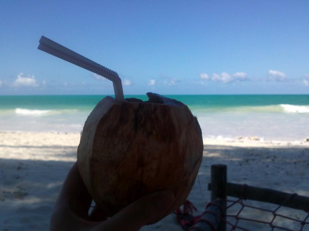 Nejlepší piňa colada v čerstvě utrženém kokosu.