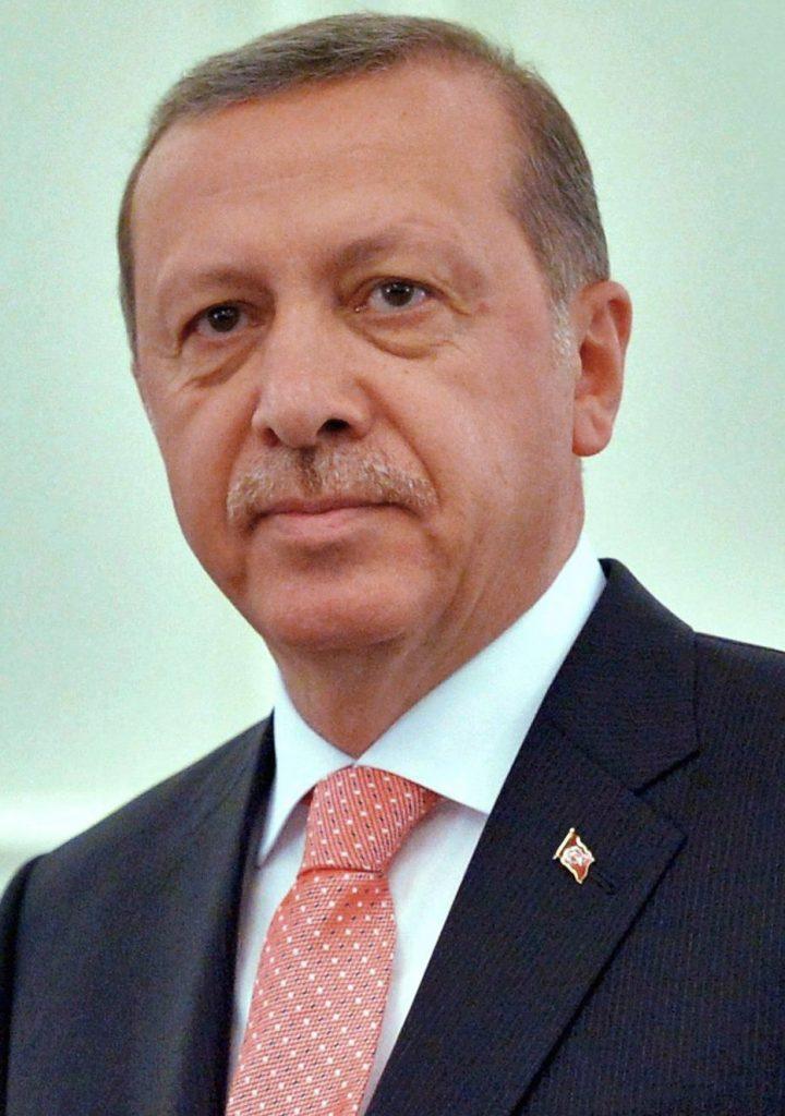 Turecký prezident nedokáže přijmout kritiku, ani tu konstruktivní, tvrdí novinář Emre Kızılkaya